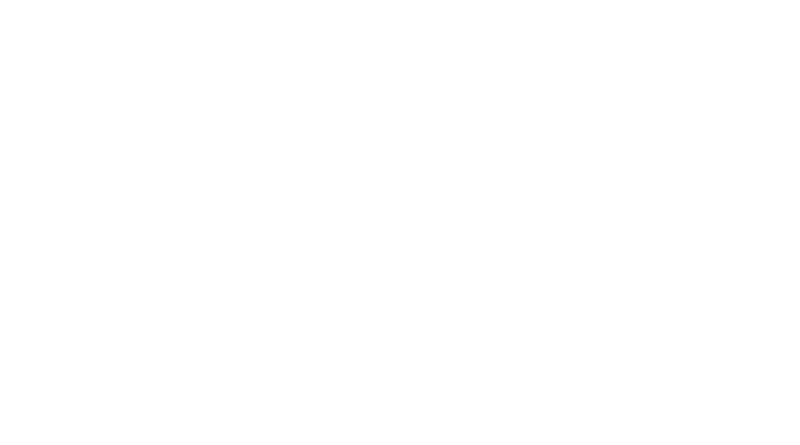 Les essais du club